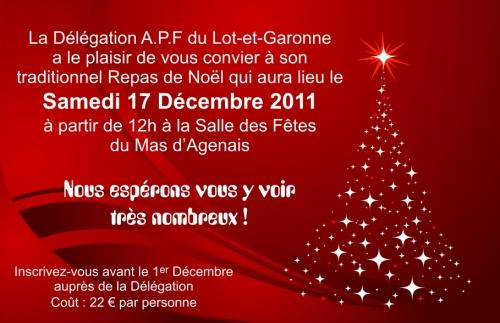 Repas Noël 2011.jpg